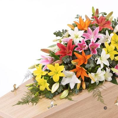 Lily Casket Spray   Mixed Colours